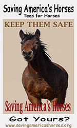 Tees to Horses - Keep them Safe